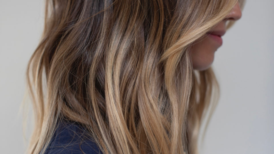 Winter honey brown highlights…
